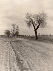 Historisches Foto der Mönchmühle Mühlenbecker Land